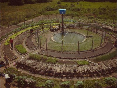 horta mandala, permacultura