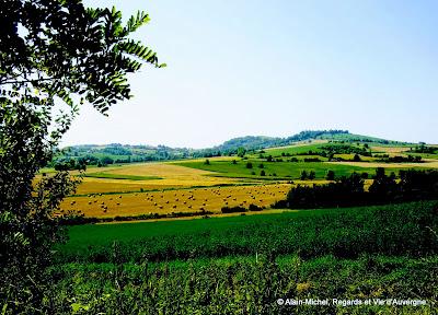 paysage d'été