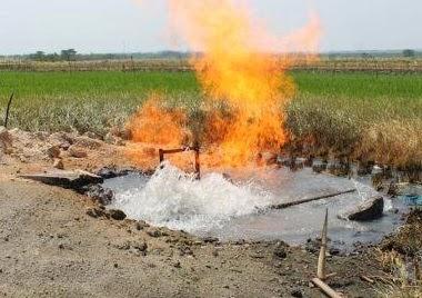 Gas Biogenik di Lokasi Persawahan