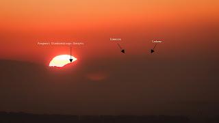 Zachód słońca za Tatrami - widok z Grabówki, 2015.10.31. fot. Radosław Wierzbiński