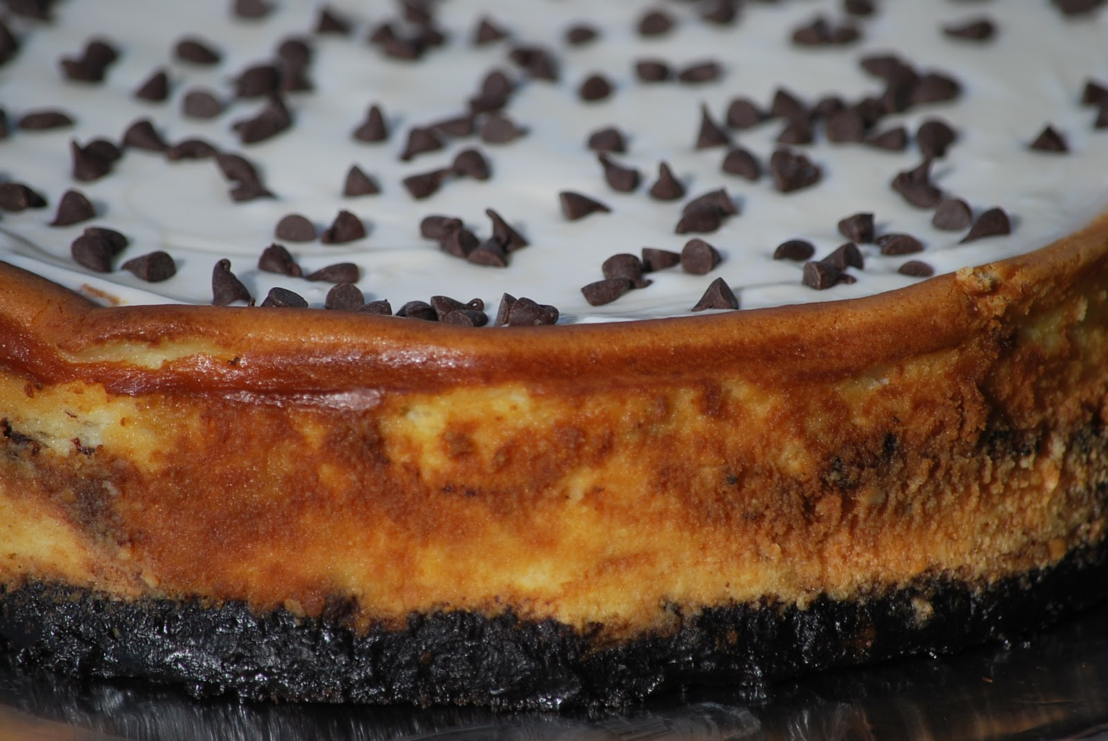 Chocolate+Chip+Cheesecake+-+Chocolate+Chips+2.JPG