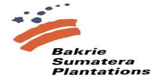 Lowongan Kerja PT Bakrie Sumatera Plantations Tbk September 2013 Terbaru