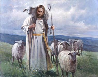 shepherd schuhe bis -84%