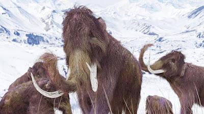Spesimen Mammoth Baru, Mendukung Upaya kloning