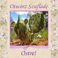 http://szuflada-szuflada.blogspot.com/2014/09/ostre-otworz-szuflade-we-wrzesniu_15.html