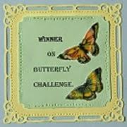 I won challenge 30
