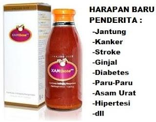 obat herbal leukemia