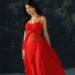 Sruthi Hassan from 7th Sense in Red Dress Photos