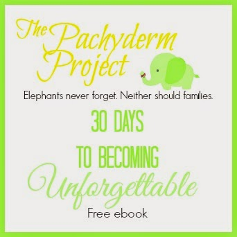 The Pachyderm Project