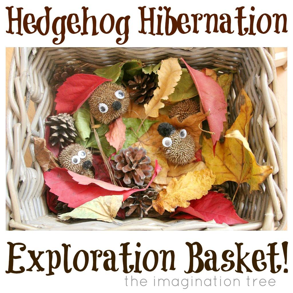 Hedgehog Hibernation Exploration Basket - The Imagination Tree