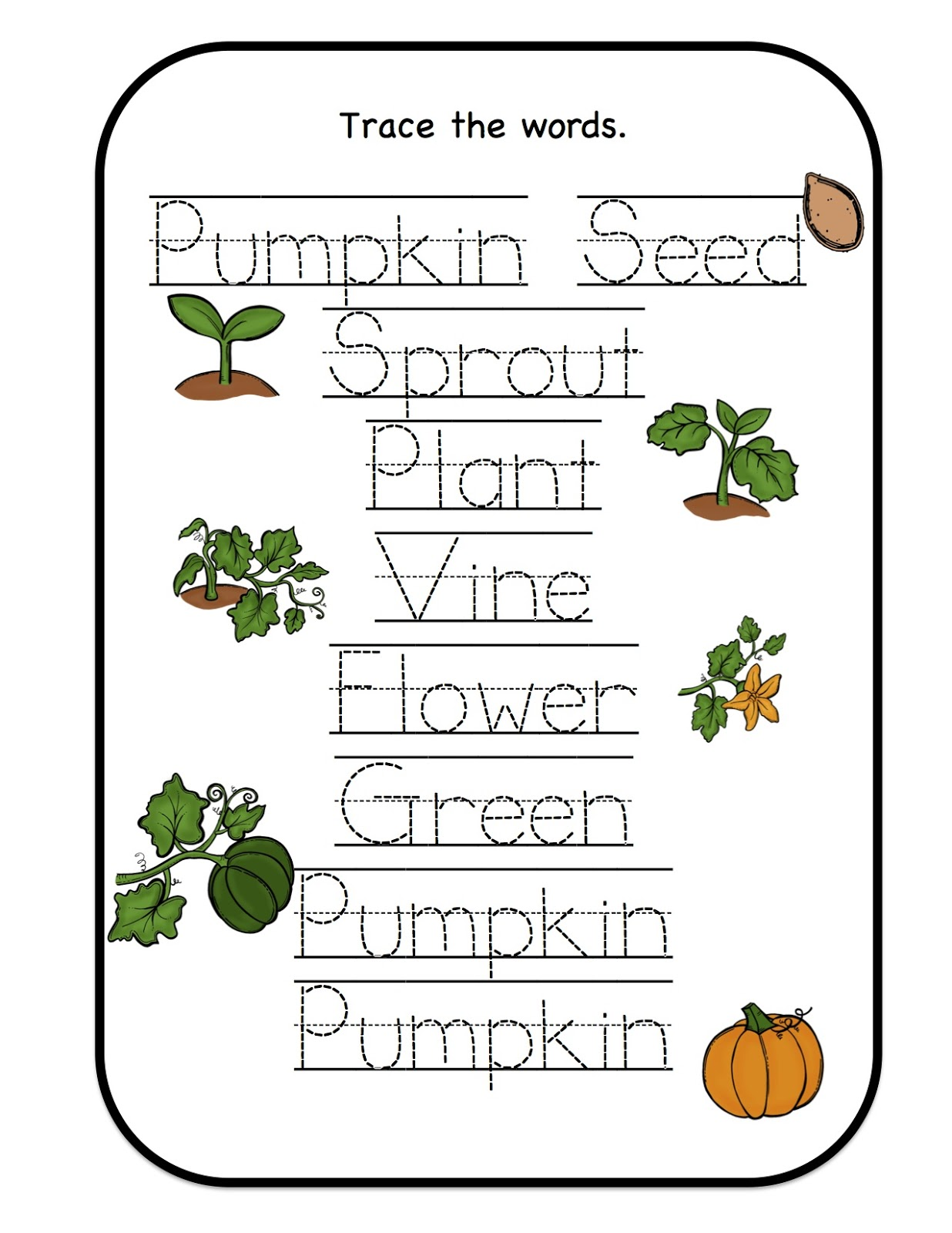 Crazy image for pumpkin life cycle printable