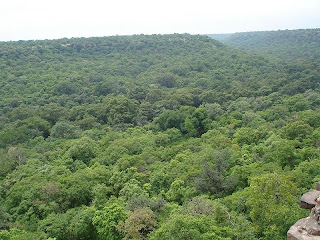 Forest around Hinglaj Fort in Mandsaur district in Madhya Pradesh, India