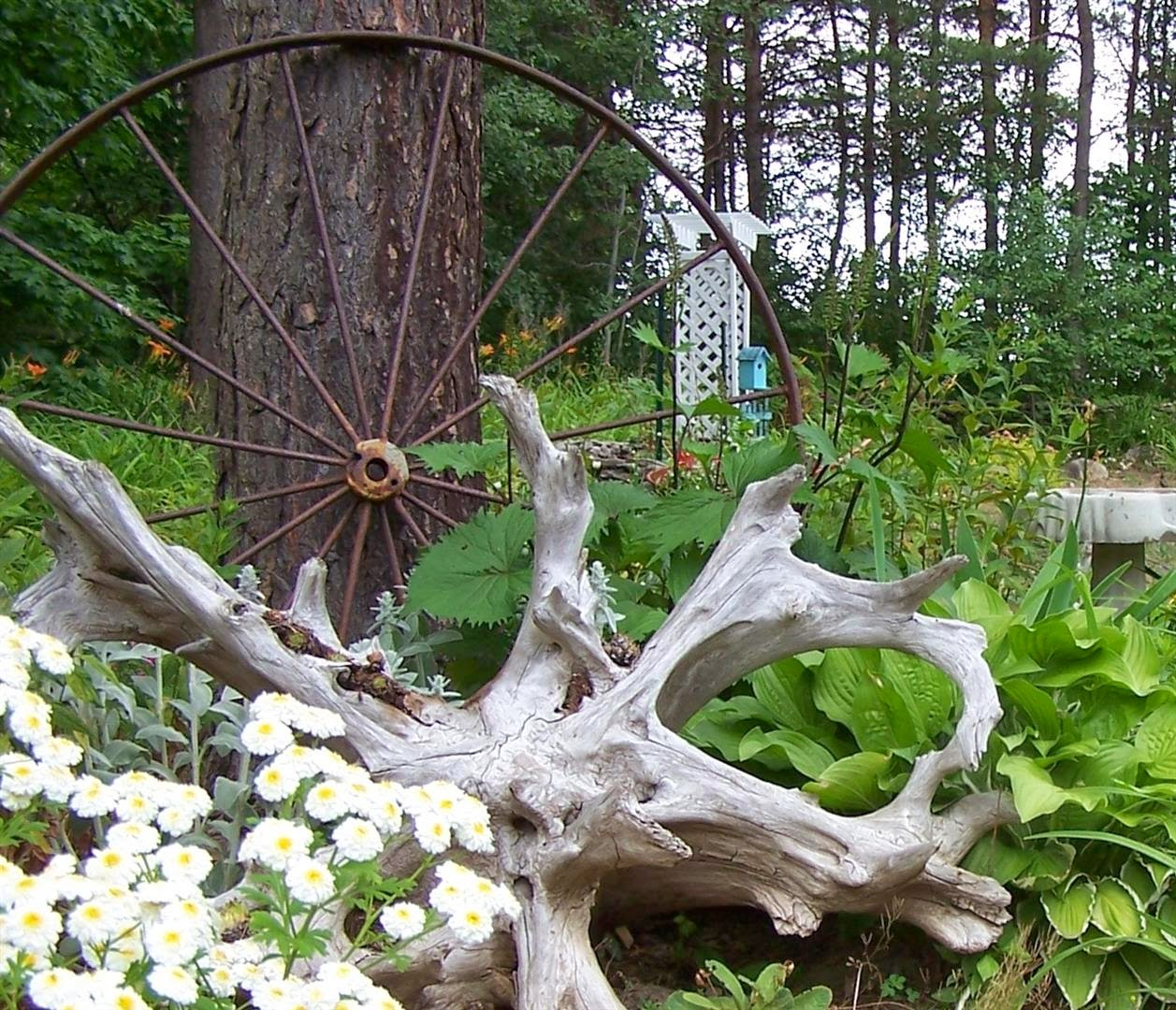 Landscaping With Driftwood : Perennial passion i did a lot of work in the garden today