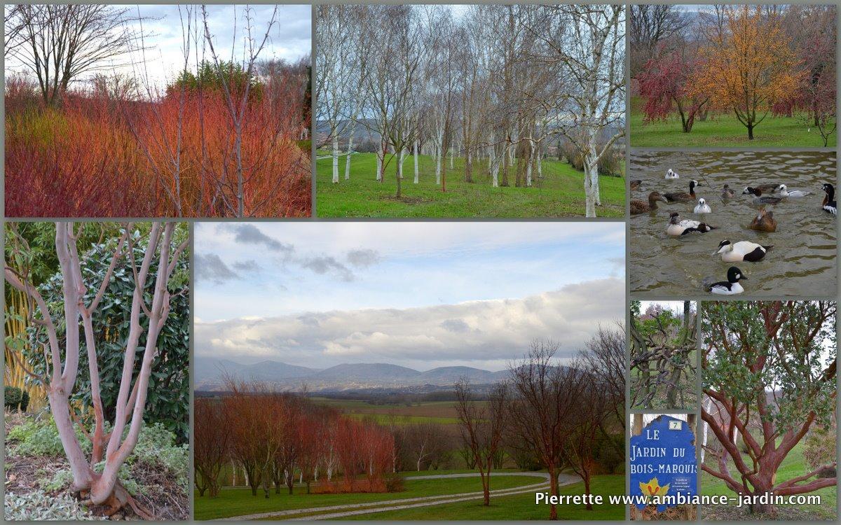 Ambiance jardin jardin du bois marquis exceptionnelle visite - Jardin bois marquis vernioz colombes ...