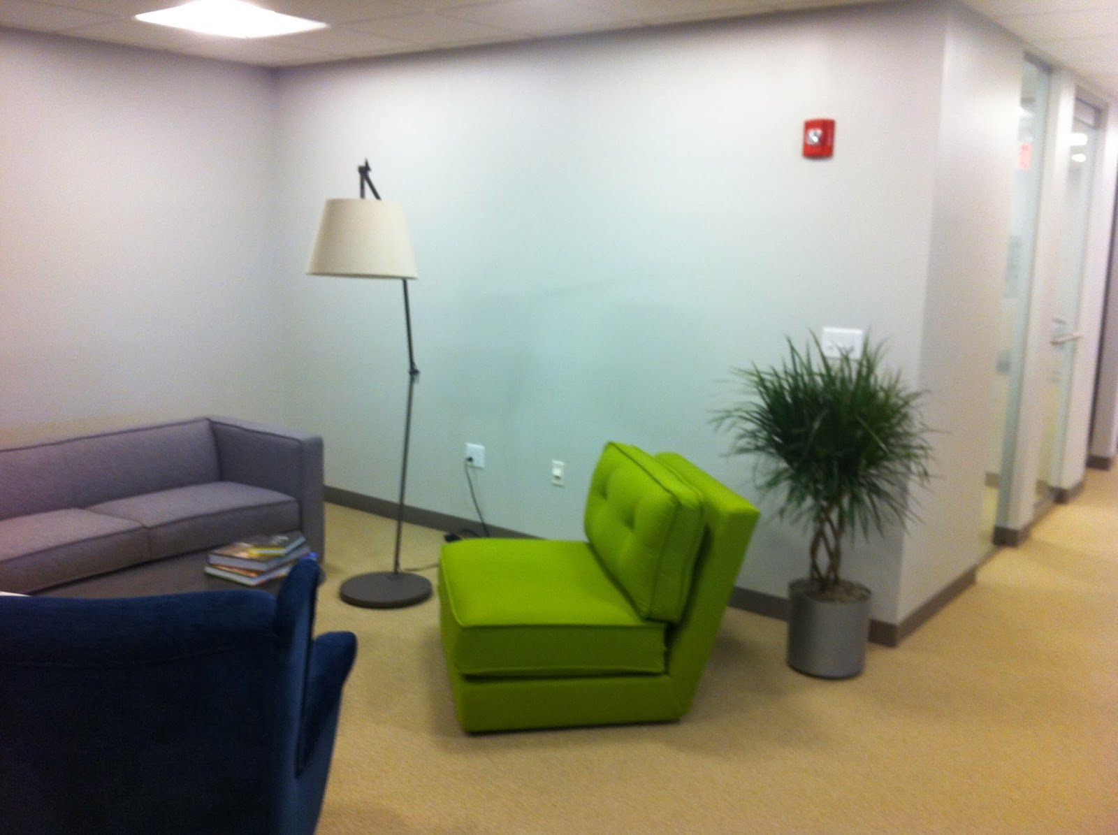 benefits of plants , office plant specialists