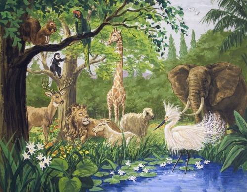 Bible Stories The Creation