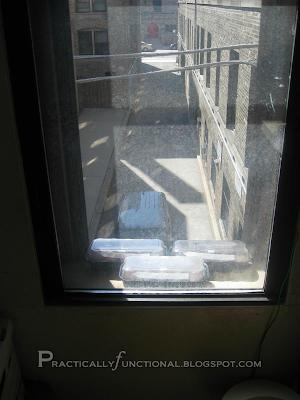 Seed starting trays in sunny windowsill