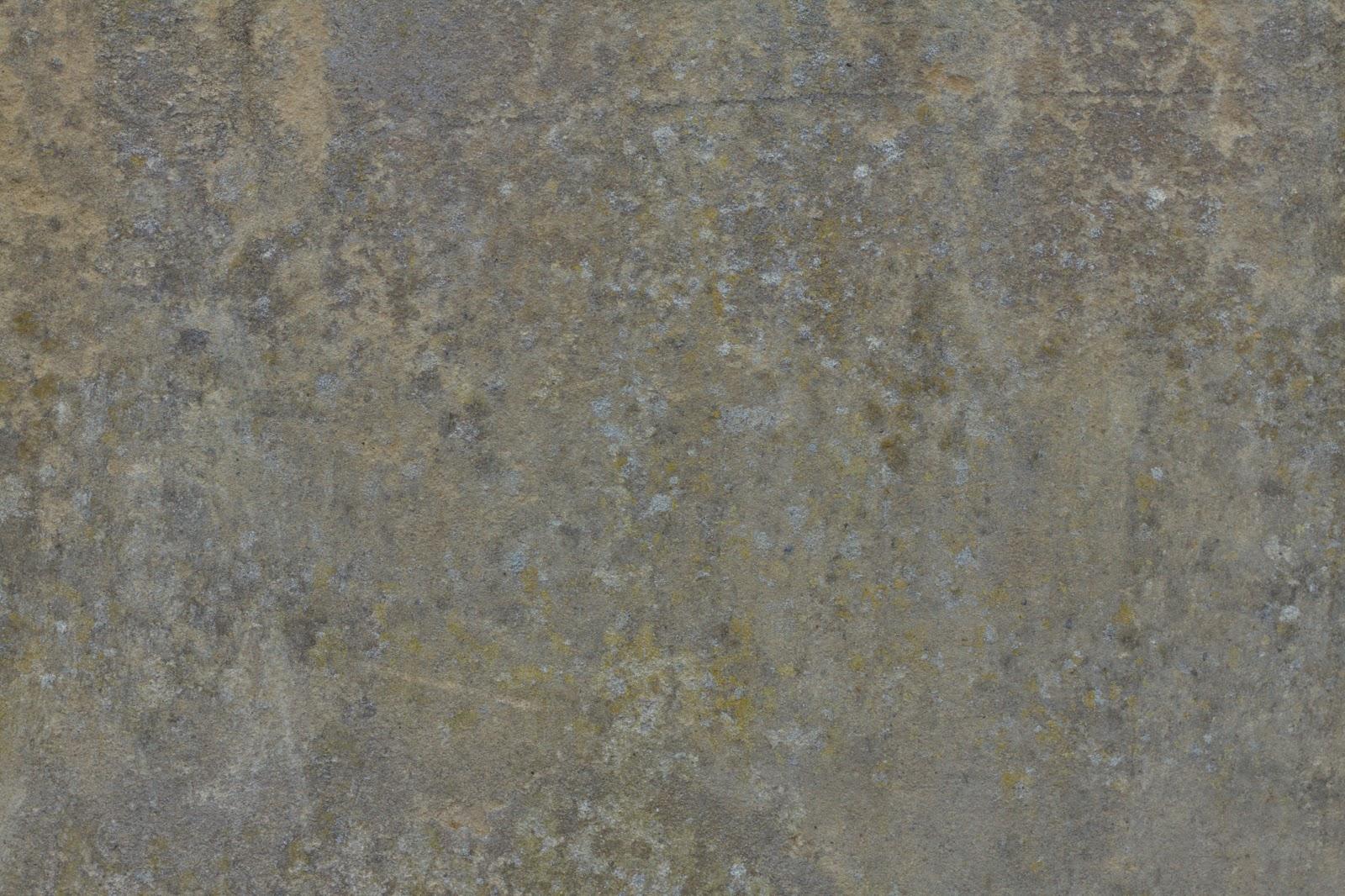 Wall plaster stucco grungy grunge moss texture ver2 4770x3178