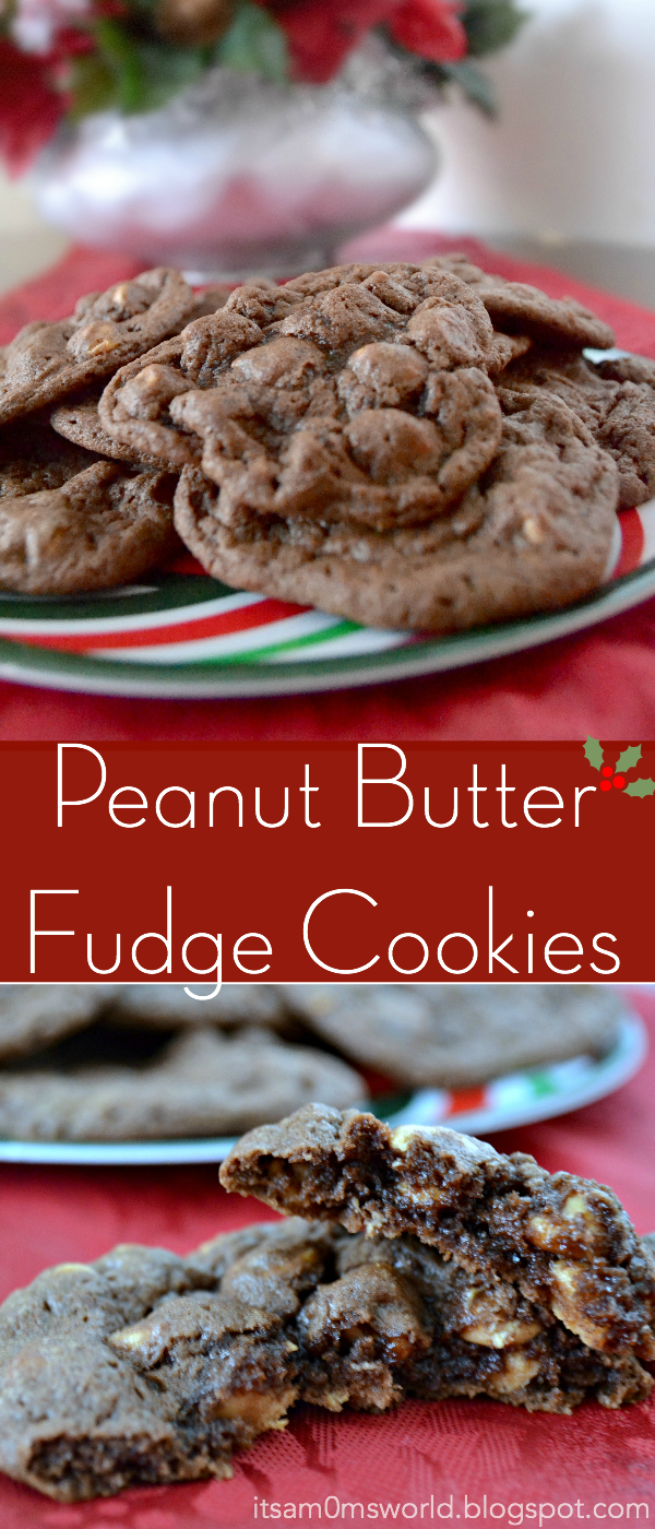Chewy Peanut Butter Fudge Cookies Reeses