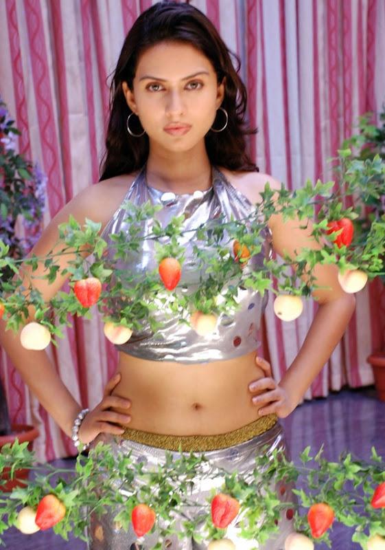 Gowri Pandit Hot Stills Gowri Pandit Hot Photos from Nithya pellikoduku unseen pics
