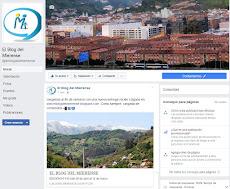 ESTAMOS EN FACEBOOK, DONDE SOMOS MÁS DE 4.800...
