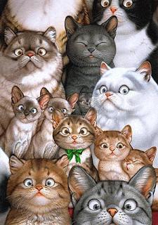 """""""Gatos"""" dão luz sem parar em Niterói e polícia começa a prender seus donos"""