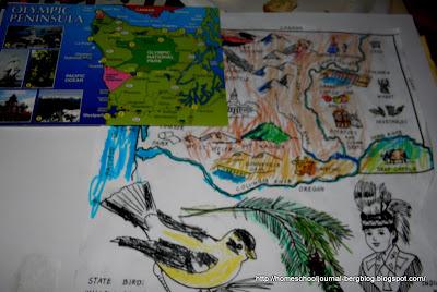 Western Hemlock Coloring Page Western Hemlock Tree Facts