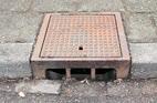 Het voorkomen van amfibieën in straatkolken. Bron: www.ravon.nl