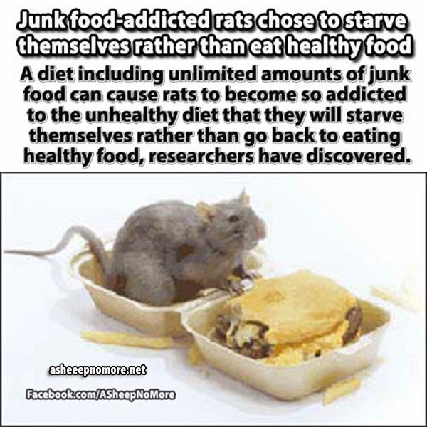how to break an addiction to junk food