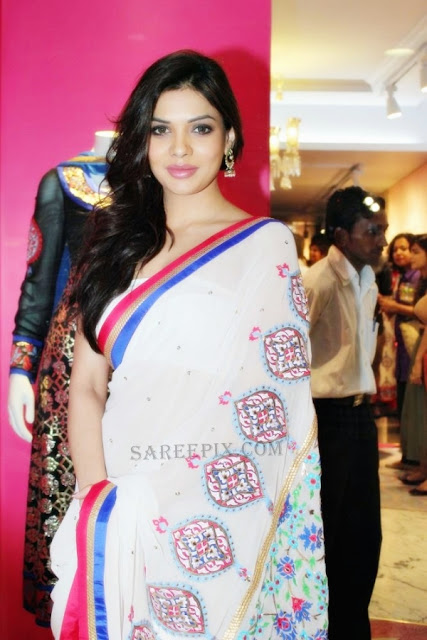 Sara-loren-transparent-saree-Manish-Arora-store-launch