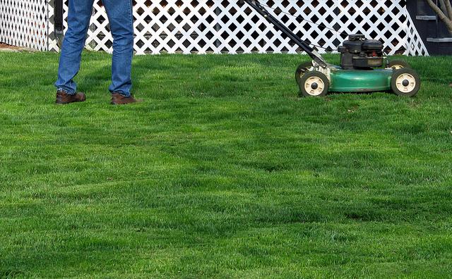 5 dicas de manutenção do gramado no inverno