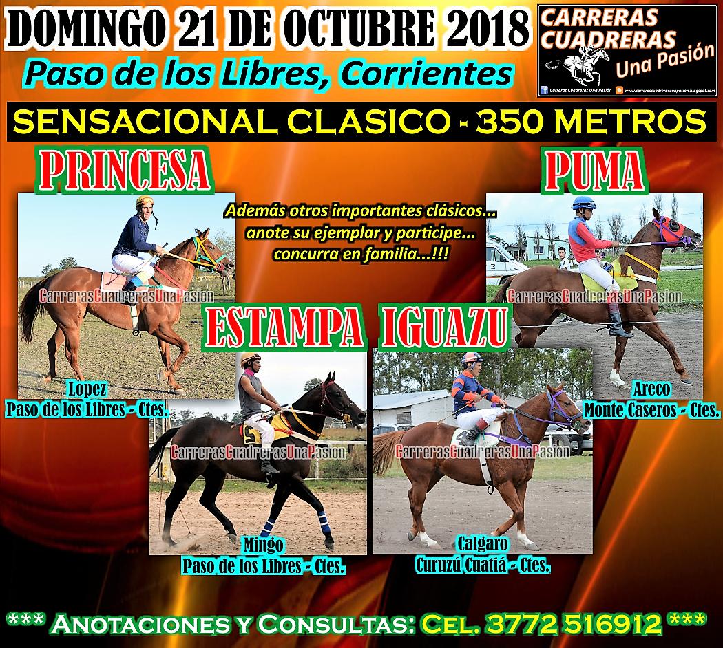 P. DE LOS LIBRES - CLASICO 350