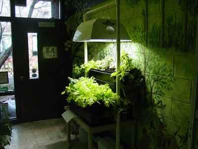 Home show indoor gardening supplies for Indoor gardening accessories