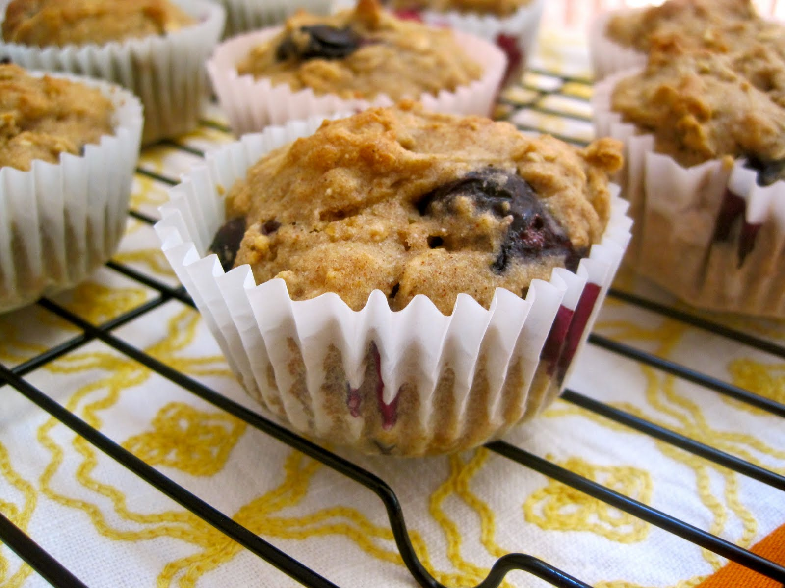 delectably gluten-free: Blueberry Oatmeal Applesauce Muffins