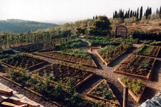 My experiments with truth for Large vegetable garden design plans