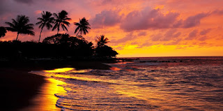 Ανεπιφύλακτα  - Σελίδα 13 Hawaii%2B3