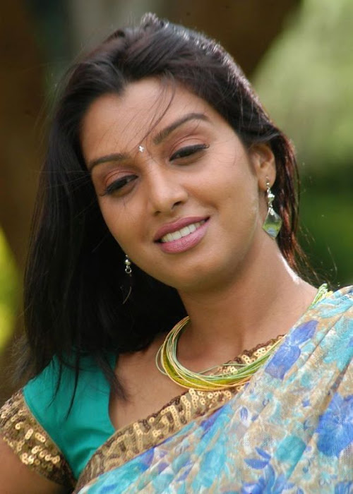 madhulika in saree