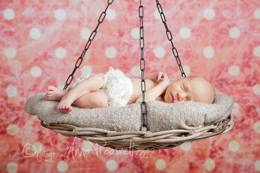 beebi-korvis-newborn-tydruk-fotopesa-fotostuudio