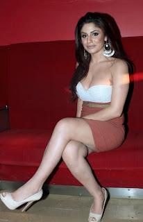 Mumbai Mirror movie actress Gihana Khan hot stills