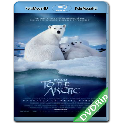 To the Arctic 3D (2012) DVDRip Español Latino