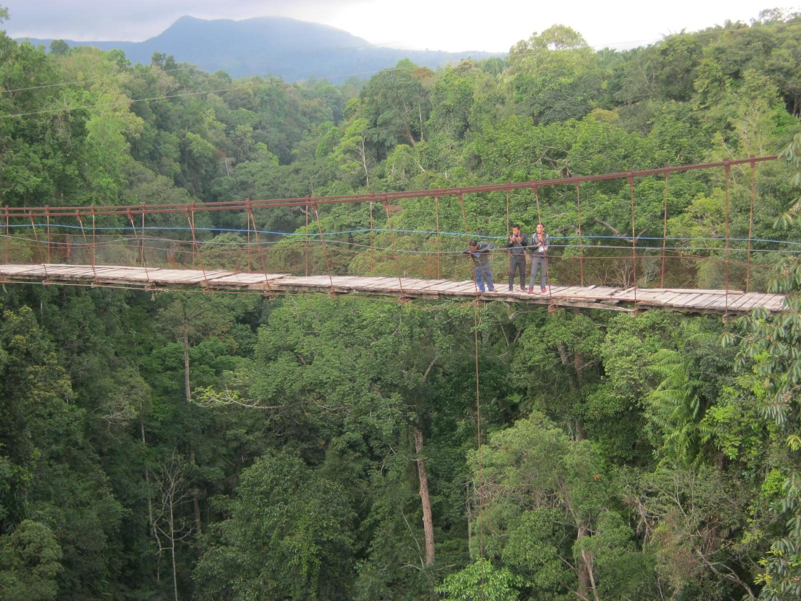 Image result for Jembatan Gantung Lau Hulung