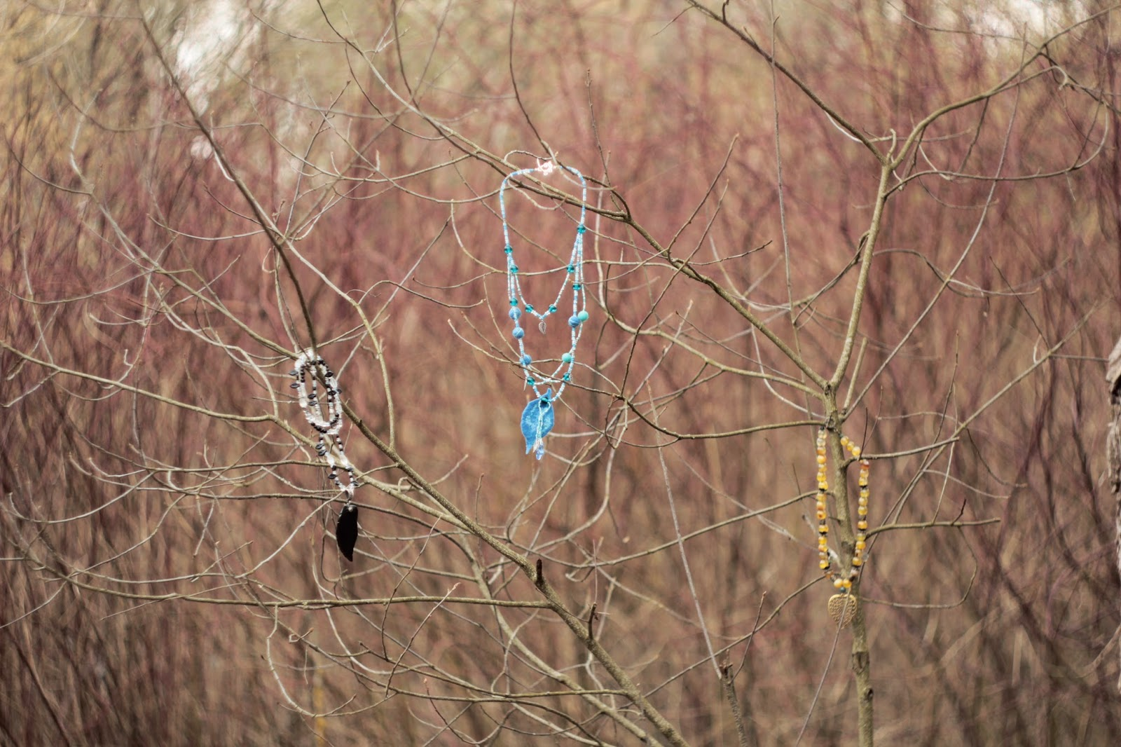 украшения, бижутерия, в природе, листья, бусы, кулоны, фото