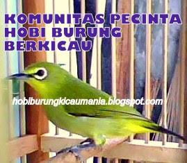 KOMUNITAS PECINTA HOBI BURUNG BERKICAU