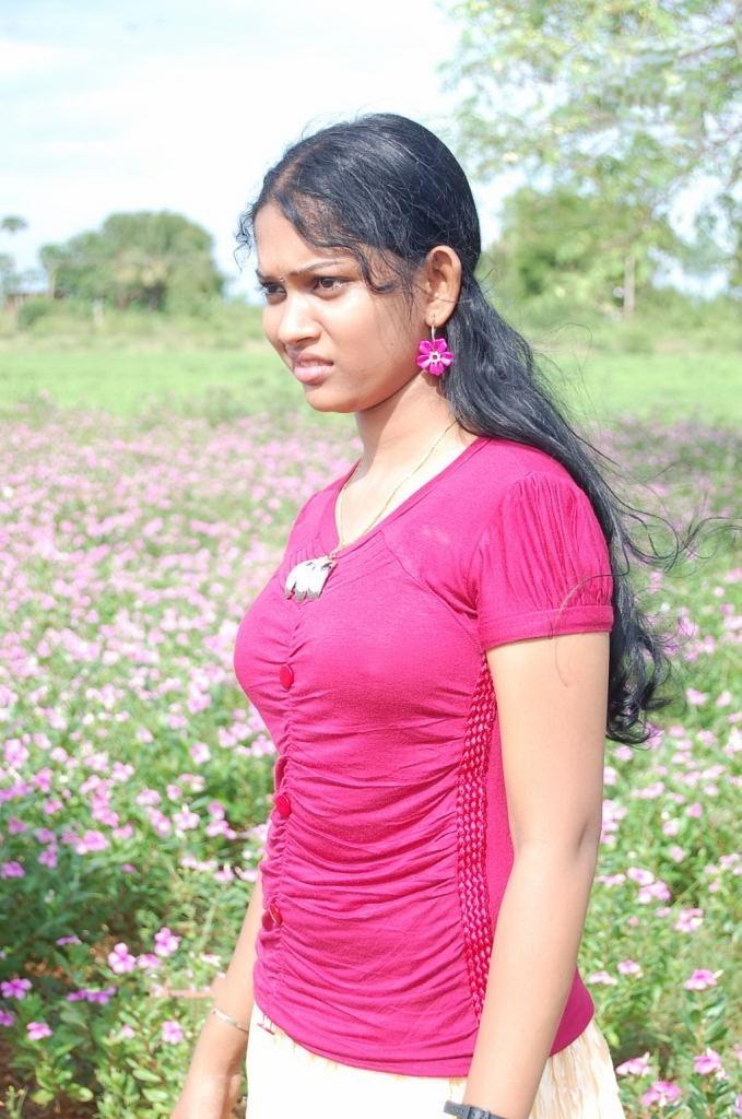 tamil actress nila in blouse wwwpixsharkcom images