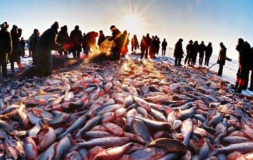 Trung Quốc thúc đẩy ngư dân ra vùng tranh chấp