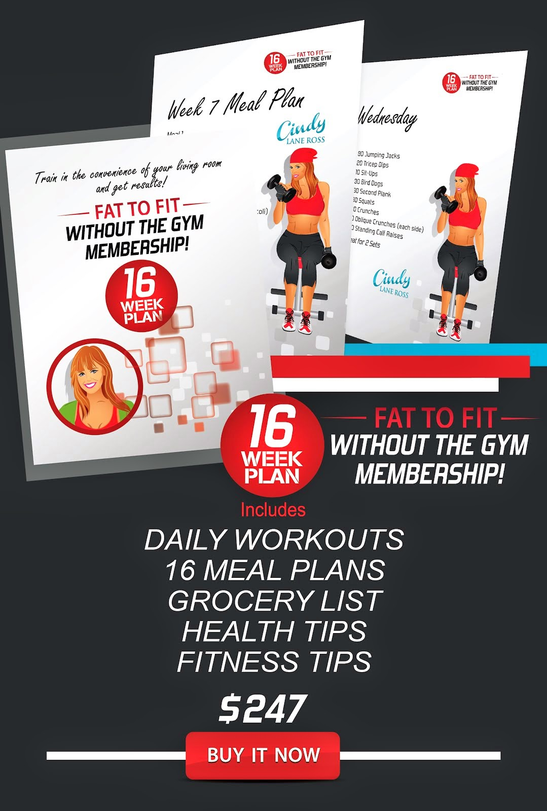 Fat to Fit without the Gym Membership 16 Week Plan