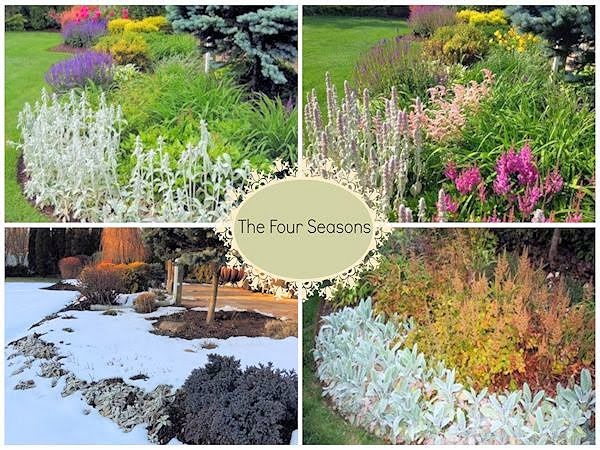 a guide to northeastern gardening the four seasons of