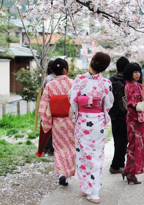 apanese ladies in traditional kimonos throughout Kyoto is not uncommon. Their kimonos reflected the colours of the cherry blossoms and they often had pictures taken of themselves with the blossoming trees.