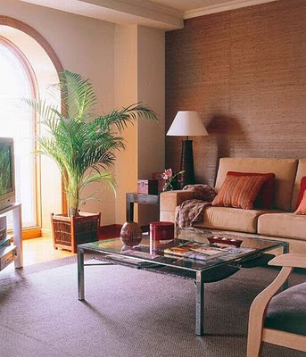 Decora el hogar decora salones acogedores for Salones acogedores
