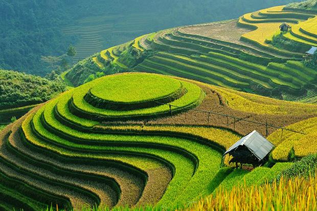 tempat wisata di vietnam yang populer